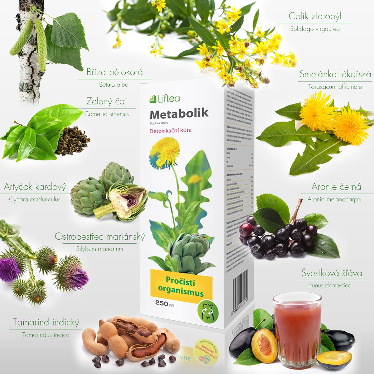 Organismus se díky bylinám, které Liftea Metabolic obsahuje, očistí od nahromaděných toxických látek a stane se odolnějším i proti nachlazení.