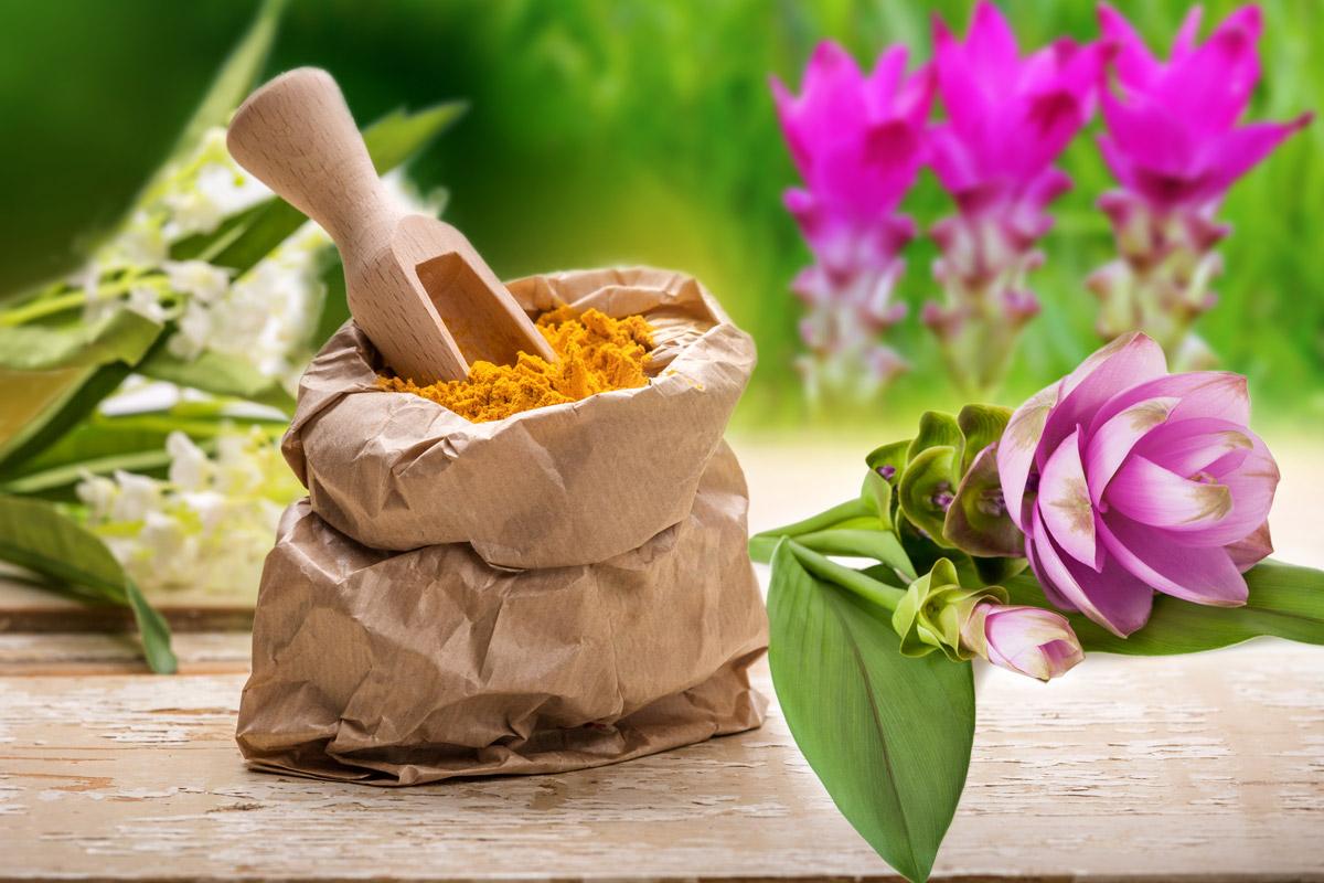 V Indii je kurkuma považována za svatou a nenahraditelnou. Barví se jí šaty buddhistických mnichů, dává chuť mnohým pokrmům, díky čemu se jí říká indický šafrán