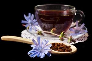Díky hořčinám je čekanka významnou součástí bylinných čajů na nemoci jater a žlučníku, ulevuje od bolesti pocházející od žlučových nebo ledvinových kamenů a působí jako slabý protijed při otravě jater.