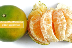 Citrus Aurantium – jedna ze superpotravin na hubnutí.